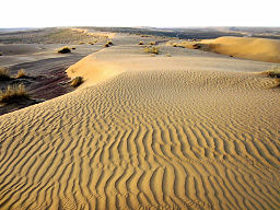 Sand dunes in the Karakum Desert of Turkmenistan