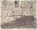 Karnak (Thèbes), Enciente du Palais - Détailes de Sculptures au Point N MET DP71354.jpg