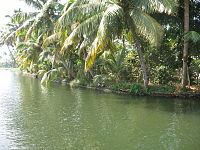 Kerala Backwaters Kuttanad.JPG