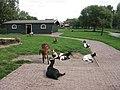 Kinderboerderij - panoramio - michiel1972.jpg