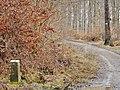 Kleindenkmale, Zwei Grenzsteine - panoramio.jpg