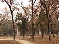 Kong Yuxu - two bixi - seen from SSW - P1060226.JPG