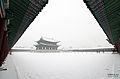 Korea Seoul Snow 18.jpg