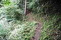 Koya Pilgrimage Routes(Nyonin-michi)17.jpg