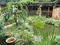 Kunming Botanical Garden - DSC03129.JPG