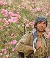 Kurdish PDKI Peshmerga (11497029965).jpg