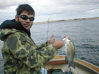Lac qui Parle - Fisherman on Lac qui Parle Lake with a white bass.