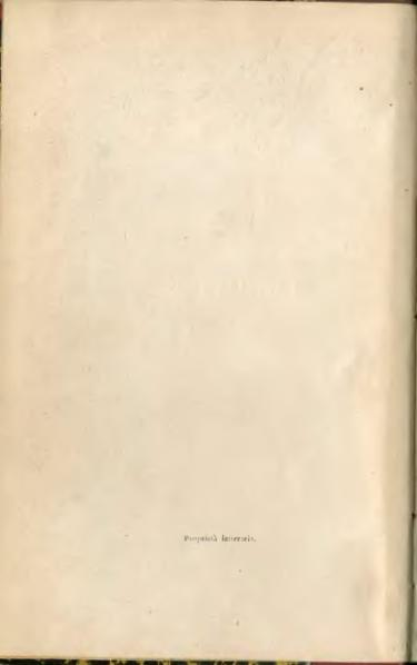 File:La tempesta (Shakespeare-Maffei).djvu