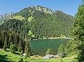 Lac des Plagnes 30.jpg