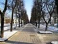 Laisves Aleja in Kaunas By Stewart.jpg