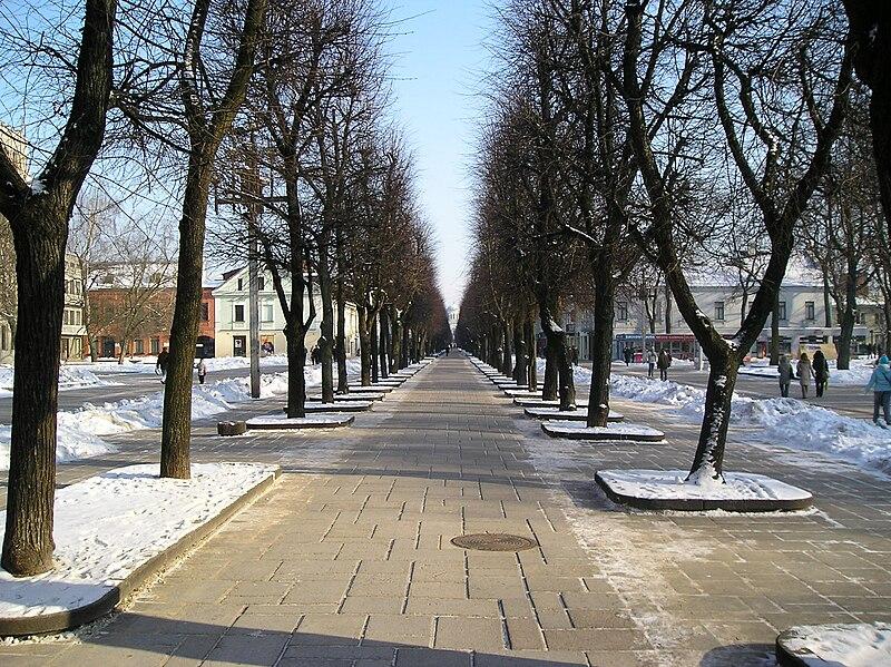 O que fazer em Kaunas, Lituânia.