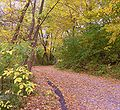 Lakeshore Path1 - Madison, WI.jpg