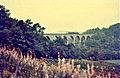 Lambley viaduct and Metro Cammell dmu.jpg