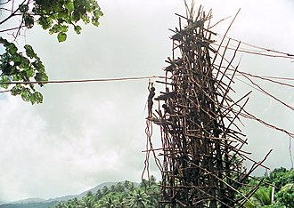 Land diving - A diver prepared to jump. Except for the vines, land diving is performed without safety equipment.