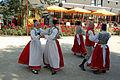 Landestrachtenfest S.H. 2009 03.jpg