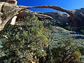 Landscape arch at arches national park.jpg