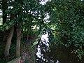 Landschaftsschutzgebiet Warmenau-Ufer LSG OS 00019 Datei 7.jpg