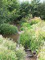 Landwehrgraben hassloch 20050729 450.jpg