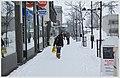 Lappenranta - winter - panoramio - Sergey Orekhov (4).jpg