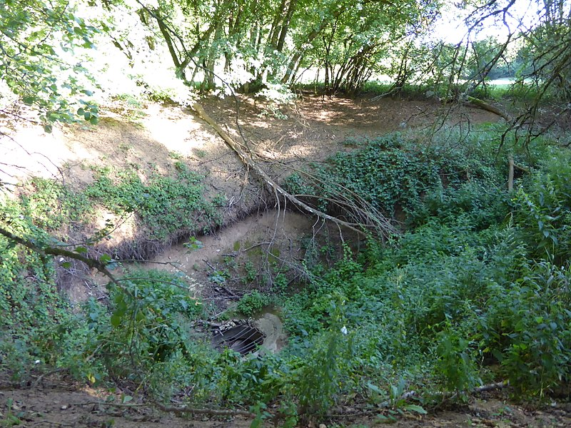 Trou des Glanes, une perte-résurgence (inversac) de la rivière Aroffe, situé sur le territoire de la commune de Moutrot en Meurthe-et-Moselle (France) à sec en été.