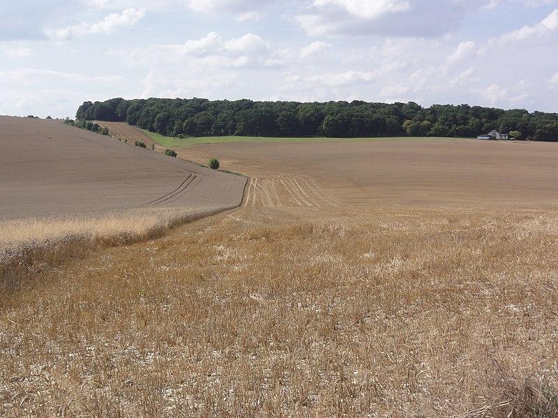 Le Verguier (Aisne) paysage