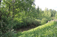Left Tributary of Ochakovka River Valley in Troparyovo 05.jpg