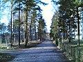 Leikkikuja - panoramio (2).jpg
