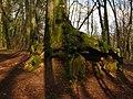 Leinsweiler, Germany - panoramio (14).jpg