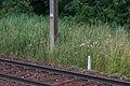 Ligne Modane-Frontière - PK 237-100 - IMG 0679.jpg