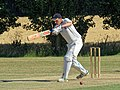 Little Hallingbury CC v. Thorley CC at Gaston Green, Essex 052.jpg