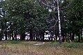 Liubeshiv Volynska-Polish cemetery-view-1.jpg