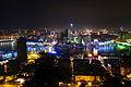 Liuzhou city night photo.JPG