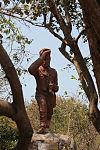 Livingstone 6737 (10065849066) (2).jpg