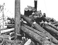 Logging crew atop cold deck, National Lumber and Manufacturing Company, ca 1920 (KINSEY 298).jpeg