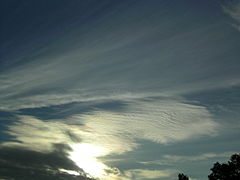 Long Cirrostratus with Cs undulatus.JPG
