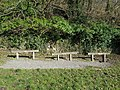 Long shot of the bench (OpenBenches 4500-1).jpg