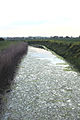 Looking up Five Watering Sewer towards Iden - geograph.org.uk - 413787.jpg