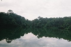 LowerPeirceReservoir-200803.jpg