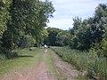 Luce Line Bike-Walk Trail, Cosmos MN - panoramio.jpg