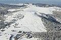 Luftaufnahme-Feldberg-Seebuck-30122004.jpg