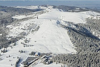 Feldberg (Black Forest) - Feldberg (summit at rear of treeless area, with towers) and the Seebuck (front, with tower and ski lifts)