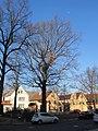Luthereiche Trachau Winter (3).jpg