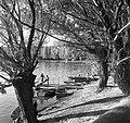 Mártély 1975, Tisza-part. Fortepan 60094.jpg