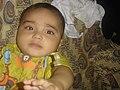 M.Rehman - panoramio.jpg