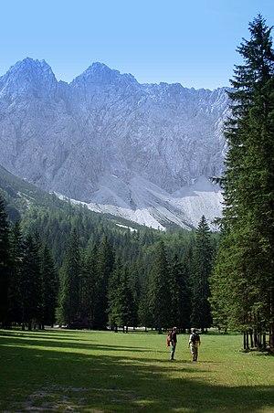 Bodental - Märchenwiese (Fairytale Meadow) with the Vertatscha