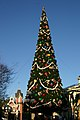 Magic Kingdom - Christmas Tree - by Mike Miley.jpg