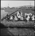 Manzanar Relocation Center, Manzanar, California. Evacuees of Japanese ancestry are growing flouris . . . - NARA - 537980.tif