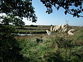 Marais de Seudre.jpg