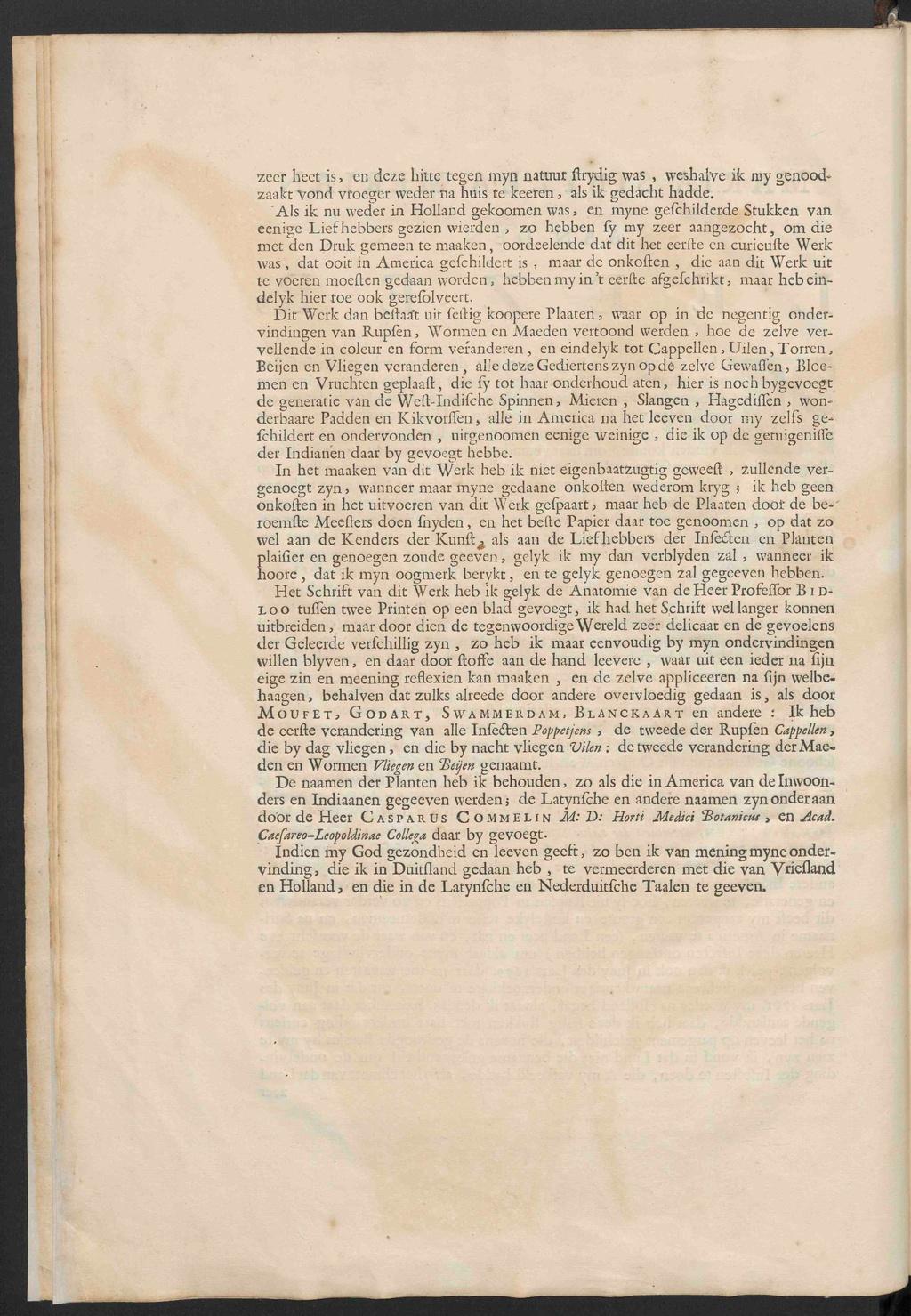 Pagina:Maria Sibylla Merian - Metamorphosis insectorum Surinamensium ...