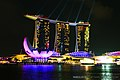 Marina Bay Sands, Singapore, at night - 20140215-01.jpg
